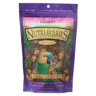 LAFEBER COMPANY LAFEBER  PARROT NUTRI-BERRIES SUNNY ORCHARD 10OZ BAG
