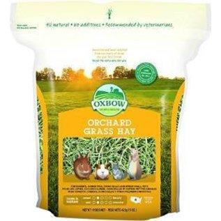 OXBOW Oxbow Orchard Grass 15 oz.