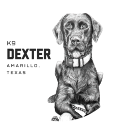 Fox + Hound Odor Eliminator Soy Candle - K9 Dexter