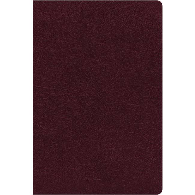 NIV Biblical Theology Study Bible - Burgundy Indexed
