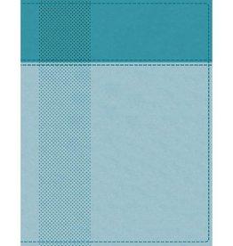 NIV Starting Place Study Bible - Aquamarine Indexed