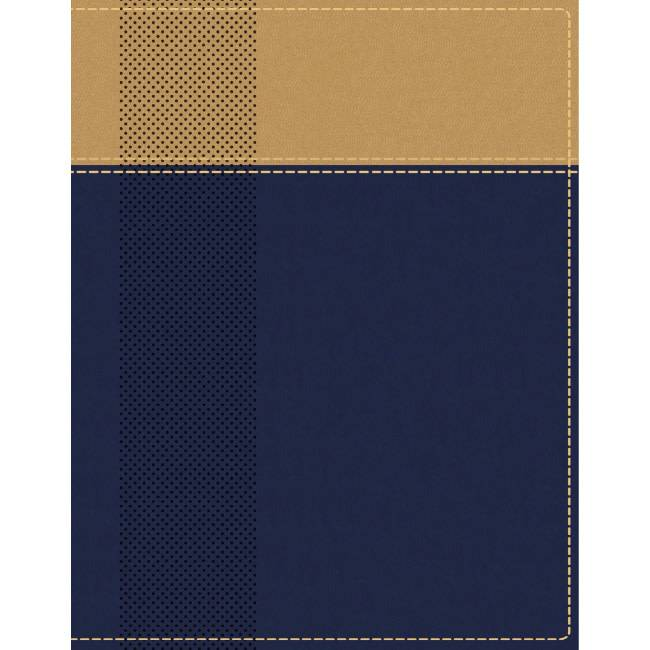 NIV Starting Place Study Bible - Navy/Tan Indexed
