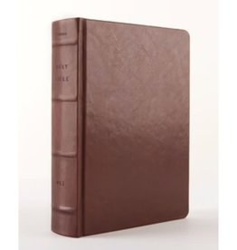 NLT Reflections Bible - Brown