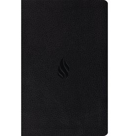 ESV Premium Gift Bible Midnight Flame