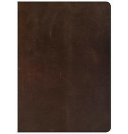 She Reads Truth Bible - Brown Leather Indexed