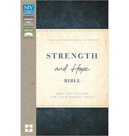 NIV Strength And Hope Bible