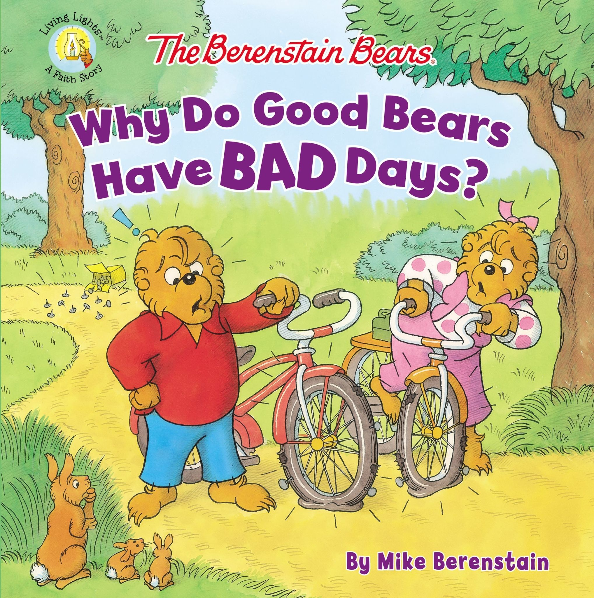 JAN BERENSTAIN The Berenstain Bears Why Do Good Bears Have Bad Days?