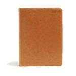 CSB Holy Land Illustrated Bible - Ginger Leathertouch