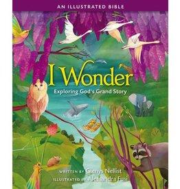 Glenys Nellist I Wonder: Exploring God's Grand Story