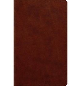 ESV Large Print Personal Size Bible - Chesnut