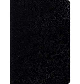 ESV LARGE PRINT STUDY BIBLE BLACK