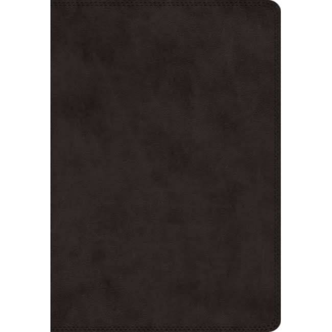 ESV Super Giant Print Bible - Black