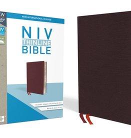 NIV Thinline Bible - Burgundy