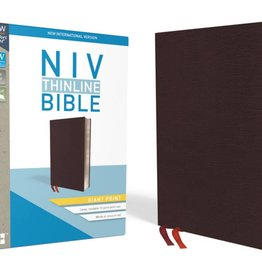 NIV Giant Print Thinline Bible - Burgundy