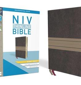 NIV Giant Print Thinline Bible - Chocolate/Tan