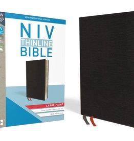 NIV Thinline BIble Large Print - Black Red Letter