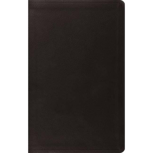 ESV Value Thinline Bible - Black