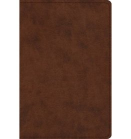 ESV Study Bible Personal Size - Brown