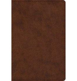 ESV Study Bible Personal Size - Brown