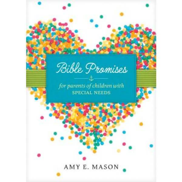 Amy Mason Bible Promises For Children With Special Needs