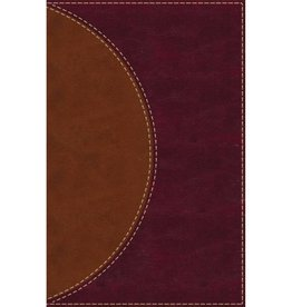 Amplified Reading Bible - Leathersoft Brown Indexed