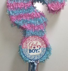 Gender Reveal Fringe Question Mark Shape Pull Pinata