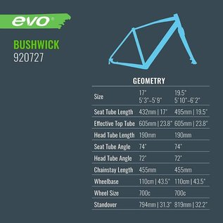 Evo Bushwick - Black / Touring Teal