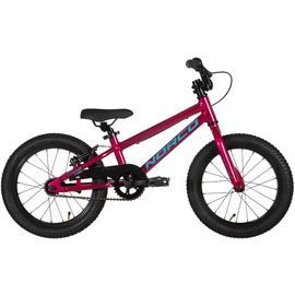 Norco Coaster 16 - Pink/Blue