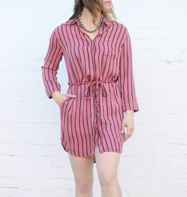 Punchy's Wendy Stripe Shirt Dress