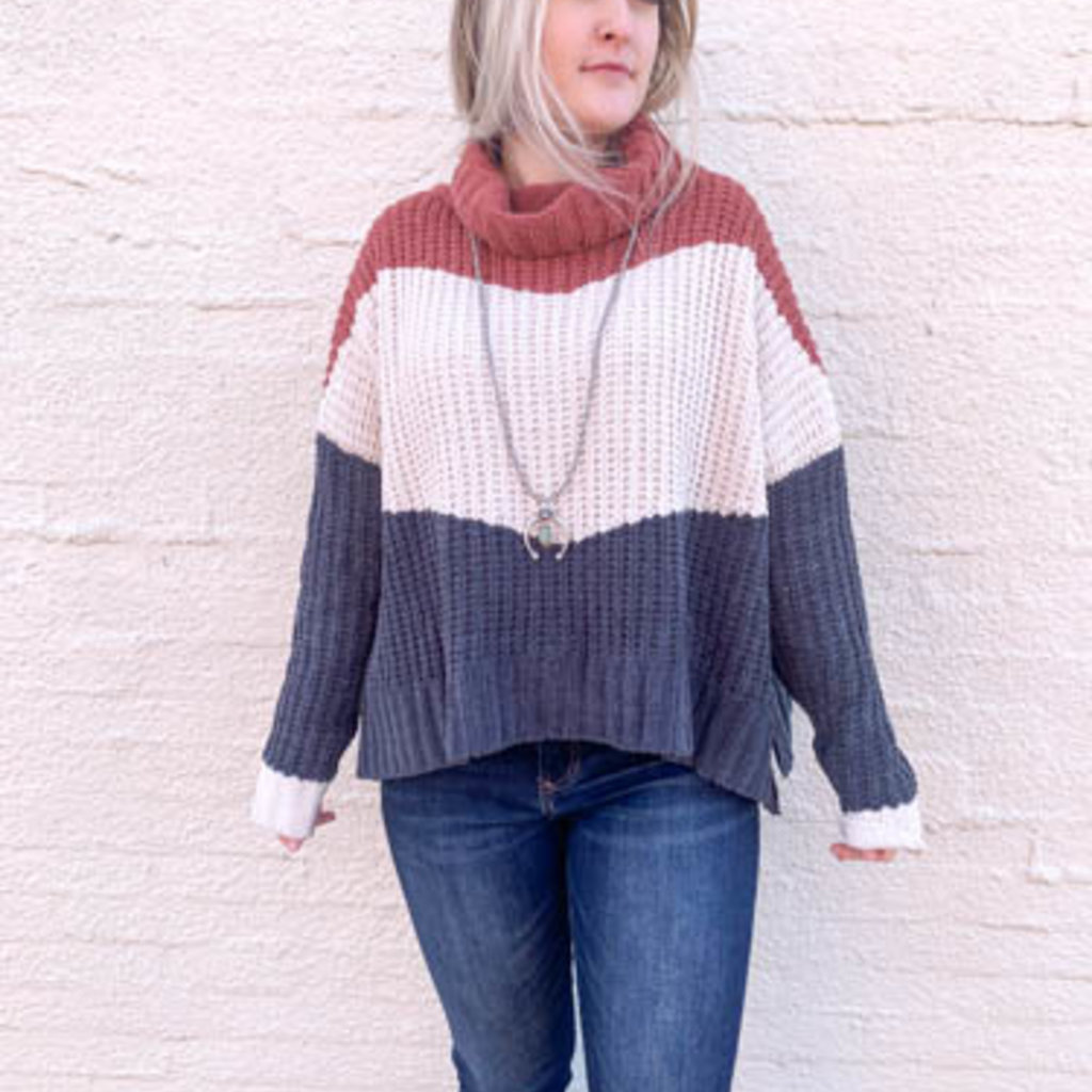 Punchy's Neopolitan Color Block Turtle Neck Sweater