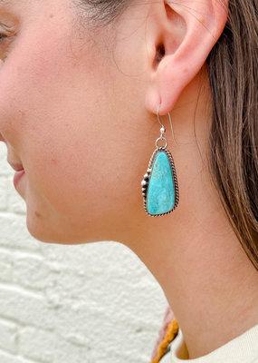 Punchy's Turquoise Hook Teardrop Earring