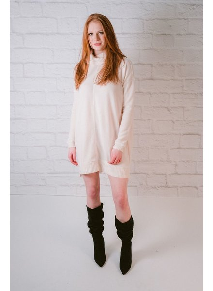Sweater Turtleneck Knit Dress
