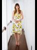 Midi Lemon Print Tie Front Dress
