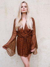 Mini Leopard Deep V Mini Dress
