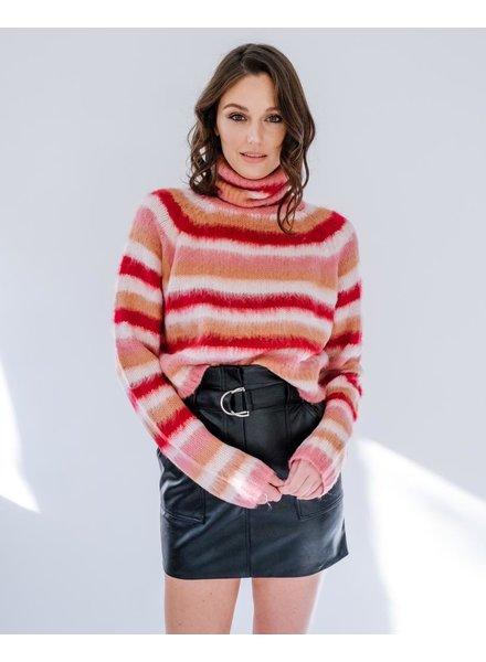 Knit Striped Turtleneck Knit