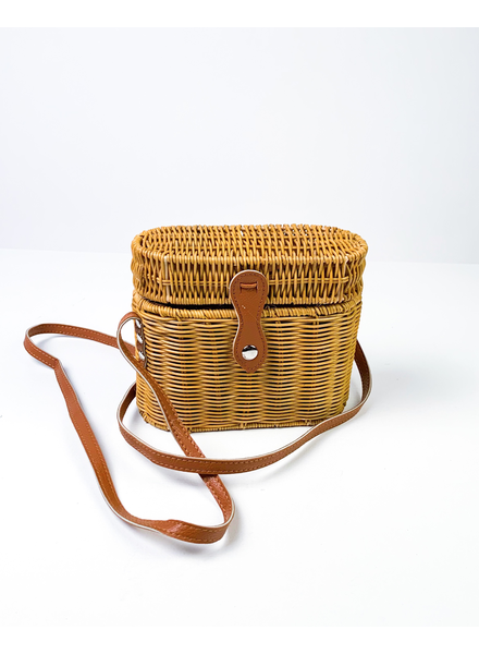 Cross-body Brown Picnic Purse