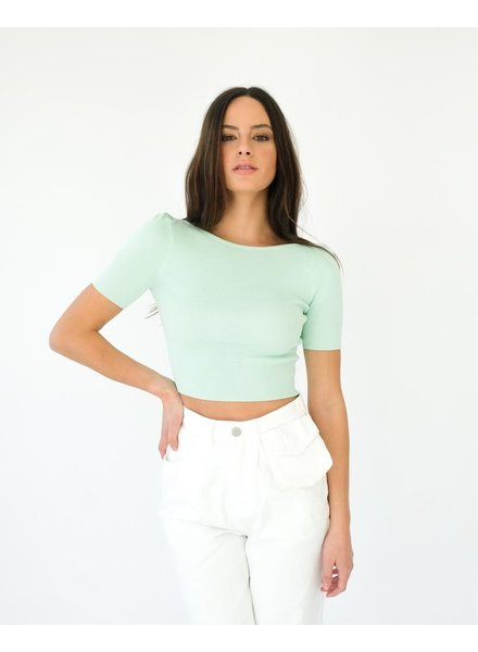 Crop Mint Fitted Top