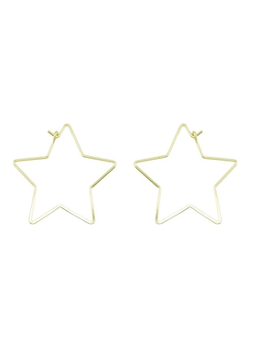 What's Hot Shiny gold star earring