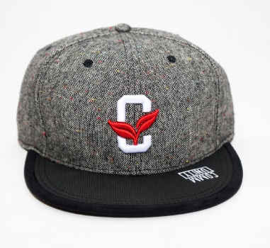 Community Intrigue Snapback