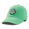 Tattered Chill Cap Daisy