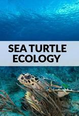 Force-E Scuba Centers Sea Turtle Ecology
