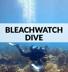 BleachWatch Dive
