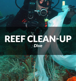Force-E Scuba Centers 9th annual Southeast Florida Reef Clean-up Dive
