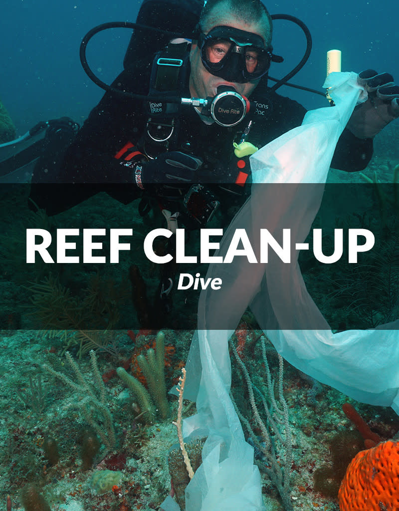 Force-E Scuba Centers 9th annual Southeast Florida Reef Clean-up Dive
