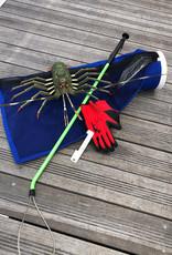 Spiny Lobster Kit