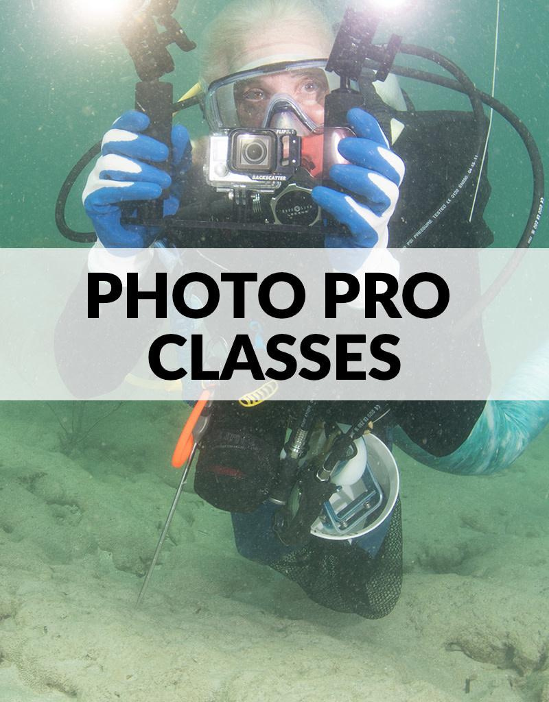 Force-E Scuba Centers Photo Pro Photography Classes