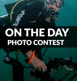 Force-E Scuba Centers On the Day Photo Contest