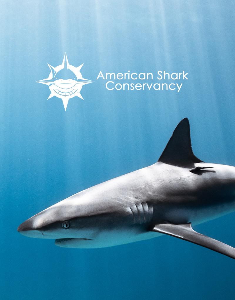 Force-E Scuba Centers SOS Chumming for Sharks