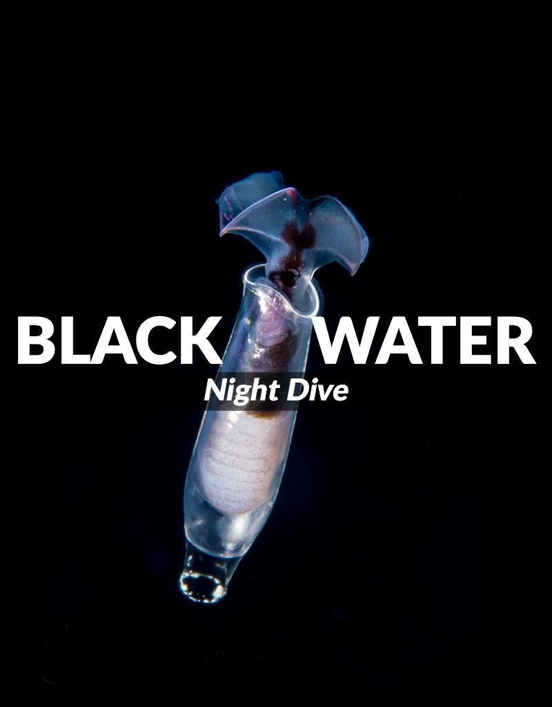 Force-E Scuba Centers Black Water Night Dive