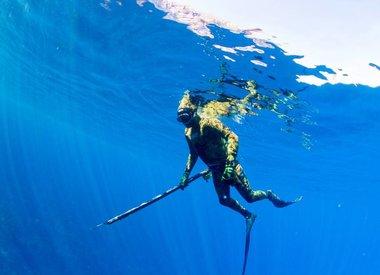 Freedive & Hunting